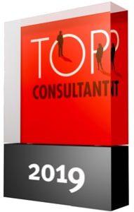 VIA Consult Top Consultant Auszeichnung 2019 Trophäe